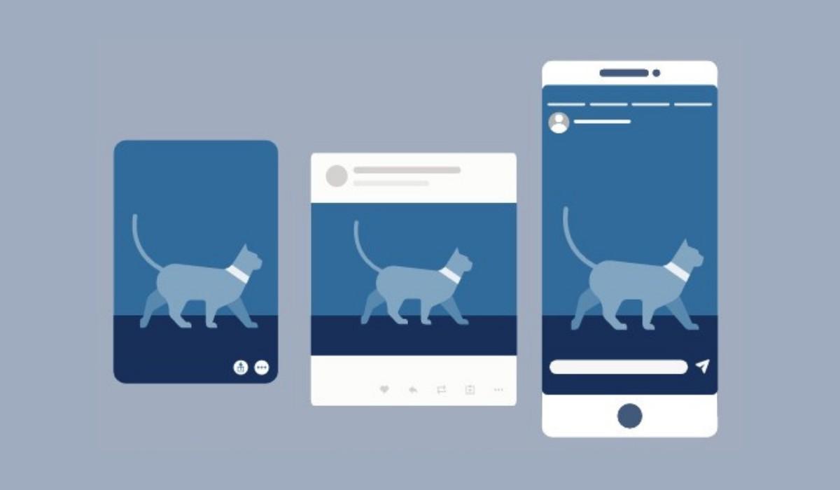 Pachet vizualuri standard social media
